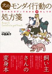 DLbook20111207.jpg