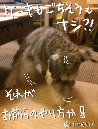 haru20160409-1.jpg